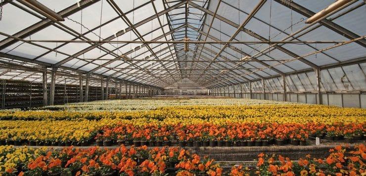 Serre de jardin b che ou en verre comment choisir - Comment choisir une serre de jardin ...