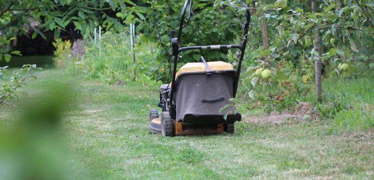 Quels sont les outils indispensables au jardinage