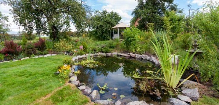 Comment aménager le bassin de jardin