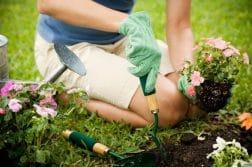 Comment bien entretenir son jardin