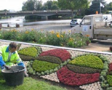 Une fleur un jardin le jardin les fleurs la vie for Entretien espaces verts paris