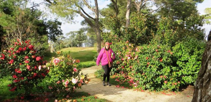 Passionné de botanique : lancez votre propre boutique