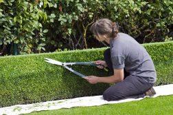 Dans quel cas faire appel à un paysagiste?