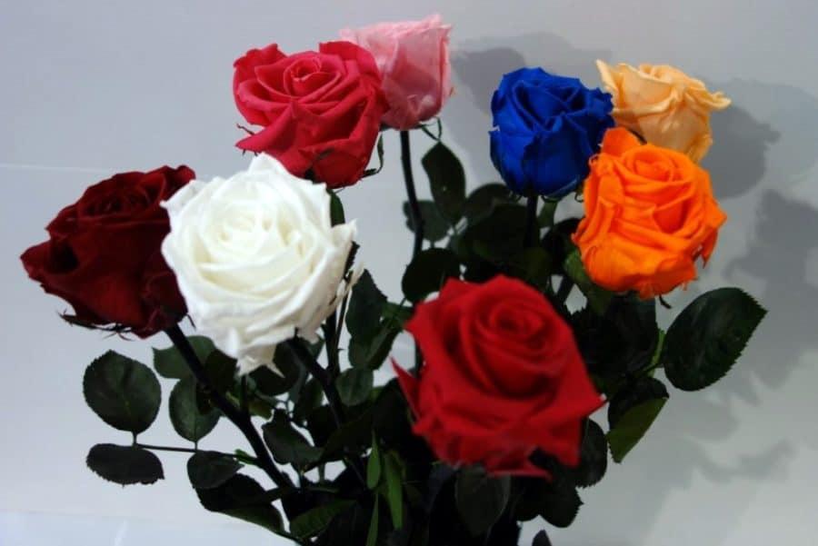 Offrir Des Roses Eternelles Symbole D Un Amour Sans Fin